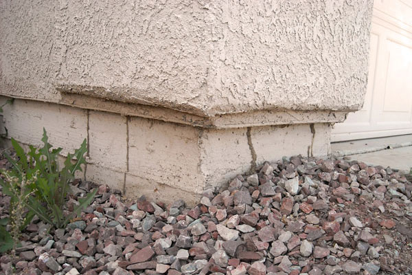 5 Signs Of Termites In The East Valley Orange Pest Control